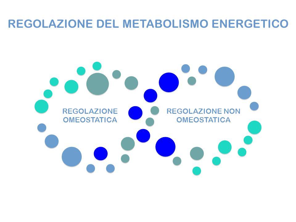 REGOLAZIONE OMEOSTATICA REGOLAZIONE NON OMEOSTATICA REGOLAZIONE DEL METABOLISMO ENERGETICO