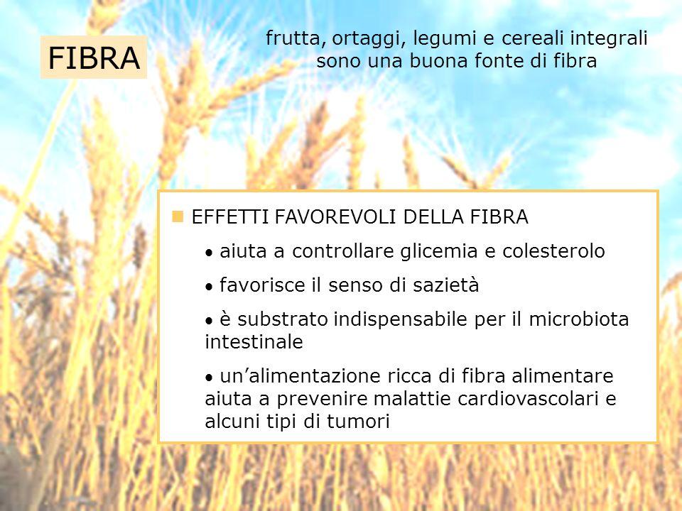 FIBRA frutta, ortaggi, legumi e cereali integrali sono una buona fonte di fibra EFFETTI FAVOREVOLI DELLA FIBRA aiuta a controllare glicemia e colester
