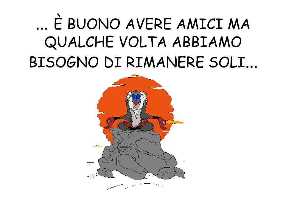 ... È BUONO AVERE AMICI MA QUALCHE VOLTA ABBIAMO BISOGNO DI RIMANERE SOLI...
