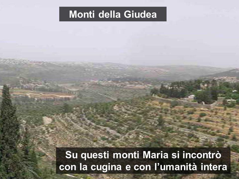 Su questi monti Maria si incontrò con la cugina e con lumanità intera Monti della Giudea