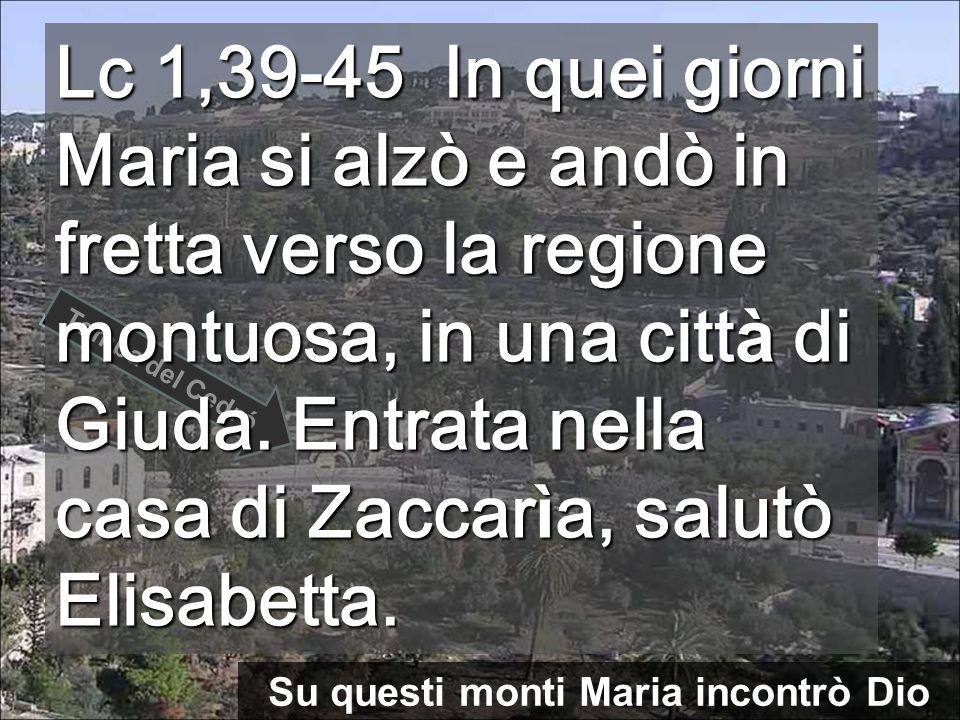 Su questi monti Maria incontrò Dio Tomba del Cedró Lc 1,39-45 In quei giorni Maria si alzò e andò in fretta verso la regione montuosa, in una citt à di Giuda.