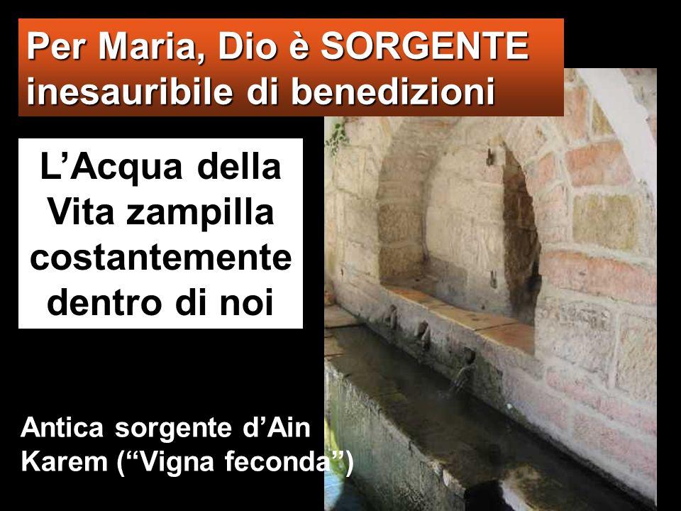 Per Maria, Dio è SORGENTE inesauribile di benedizioni LAcqua della Vita zampilla costantemente dentro di noi Antica sorgente dAin Karem (Vigna feconda)