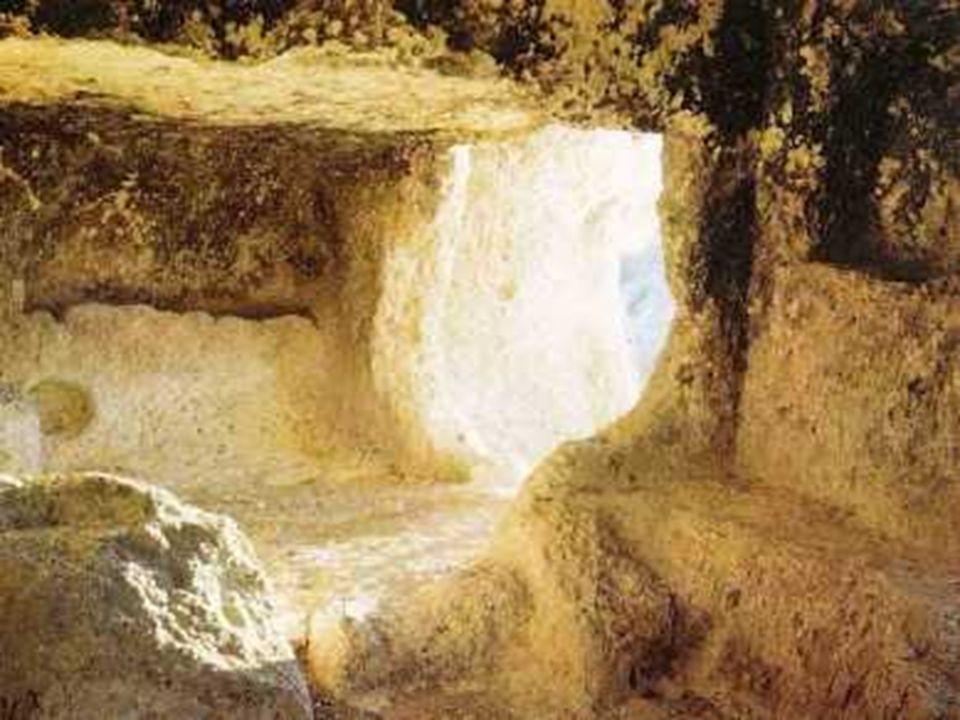 La liberazione di Mosè trova il suo significato pieno in Gesù, VINCITORE del male e della MORTE per mezzo della Vita.