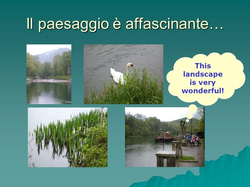 Il paesaggio è affascinante… This landscape is very wonderful!