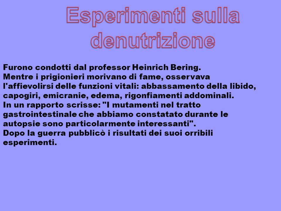Furono condotti dal professor Heinrich Bering.