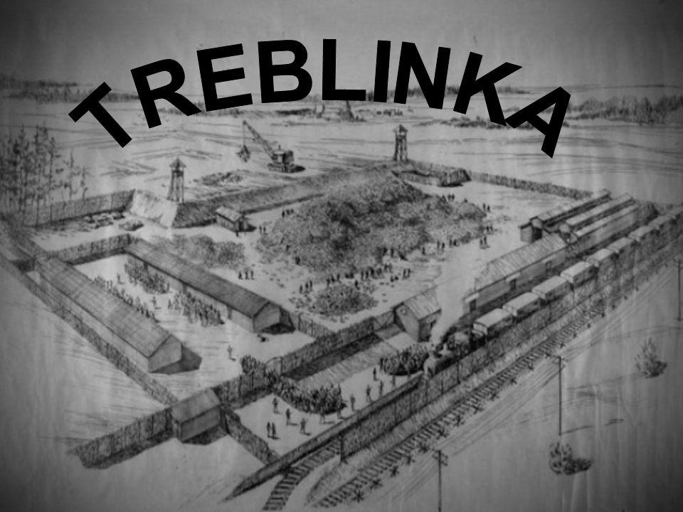 Treblinka, assieme agli altri campi dell Operazione Reinhard, fu realizzato apposta per la rapida eliminazione degli ebrei dei ghetti.