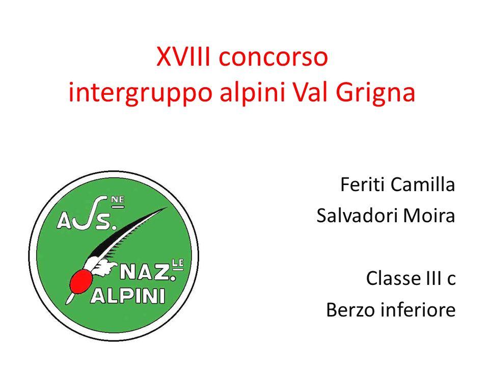 XVIII concorso intergruppo alpini Val Grigna Feriti Camilla Salvadori Moira Classe III c Berzo inferiore
