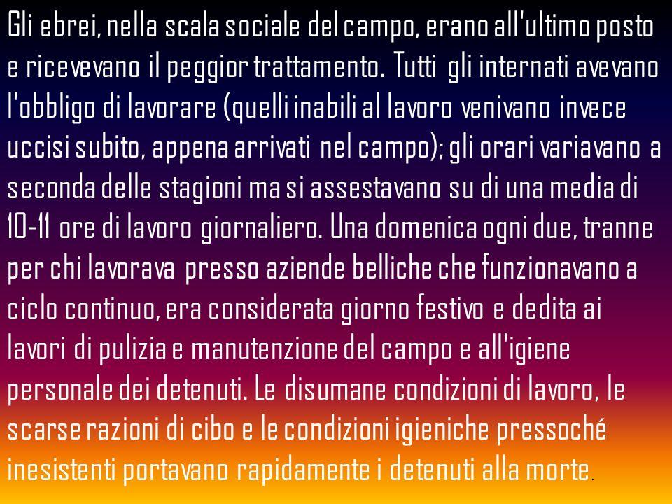 Piero Terracina, deportato ad Auschwitz, ora vive a Roma incontrando costantemente ragazzi delle scuole di tutta Italia. Piero TerracinaRoma