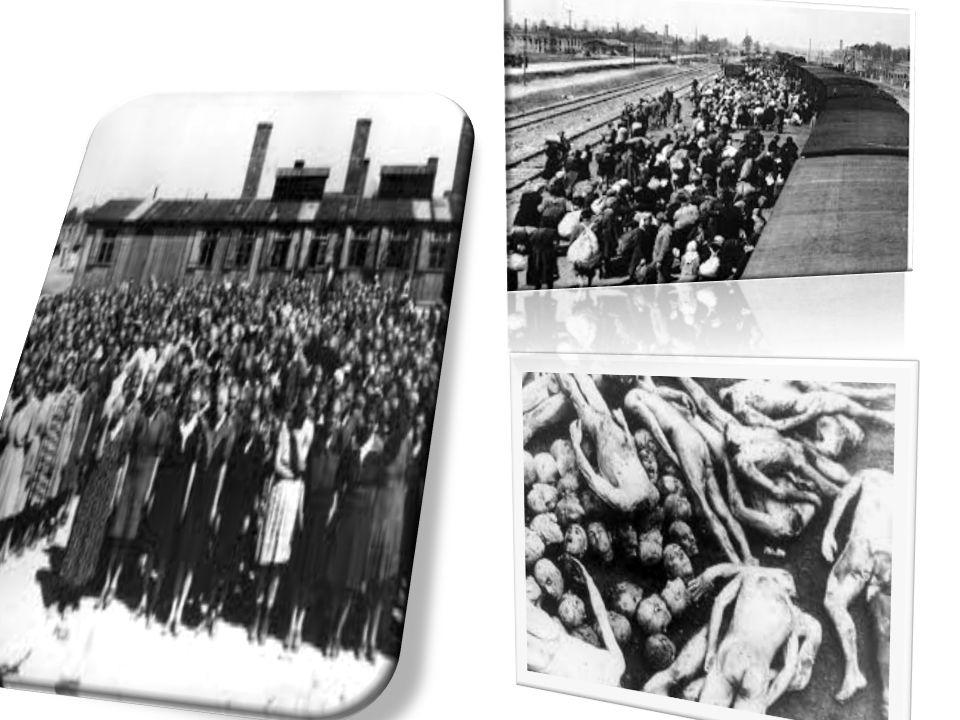 Gli ebrei, nella scala sociale del campo, erano all'ultimo posto e ricevevano il peggior trattamento. Tutti gli internati avevano l'obbligo di lavorar