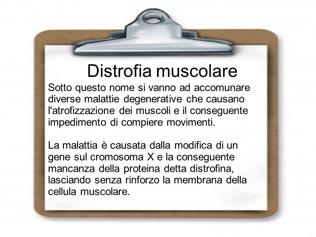 Distrofia muscolare Sotto questo nome si vanno ad accomunare diverse malattie degenerative che causano l atrofizzazione dei muscoli e il conseguente impedimento di compiere movimenti.