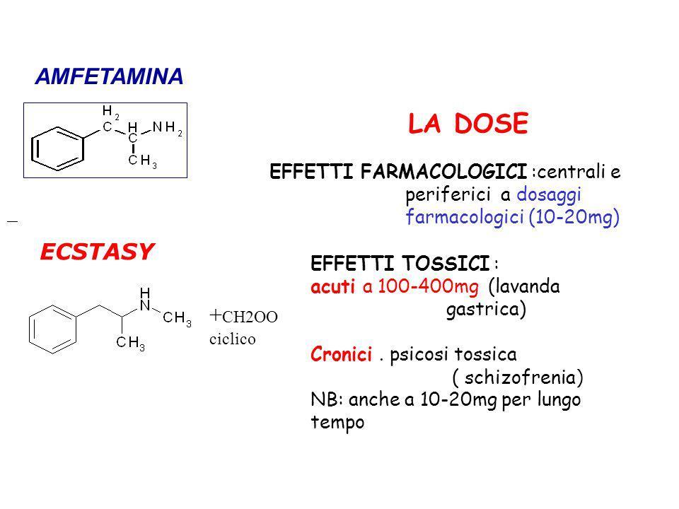 ECSTASY + CH2OO ciclico EFFETTI TOSSICI : acuti a 100-400mg (lavanda gastrica) Cronici. psicosi tossica ( schizofrenia ) NB: anche a 10-20mg per lungo