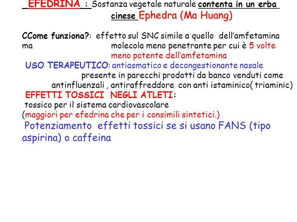 Ephedra (Ma Huang) EFEDRINA : Sostanza vegetale naturale contenta in un erba cinese Ephedra (Ma Huang) CCome funziona?: effetto sul SNC simile a quell