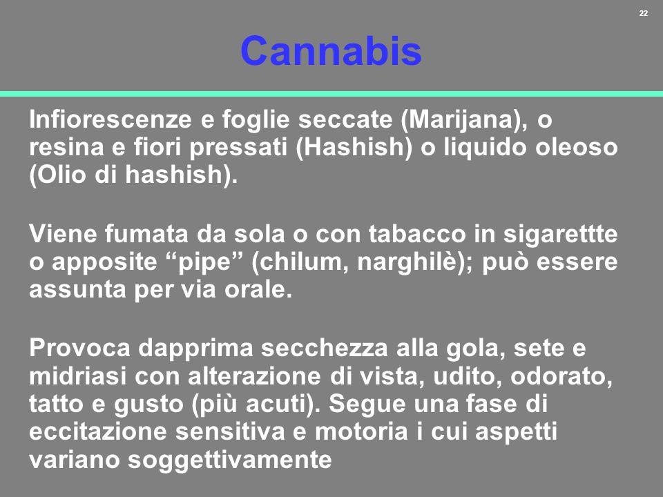 22 Cannabis Infiorescenze e foglie seccate (Marijana), o resina e fiori pressati (Hashish) o liquido oleoso (Olio di hashish). Viene fumata da sola o