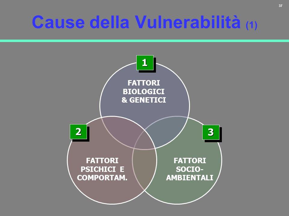 37 Cause della Vulnerabilità (1) 11 FATTORI BIOLOGICI & GENETICI 22 FATTORI PSICHICI E COMPORTAM. FATTORI SOCIO- AMBIENTALI 33