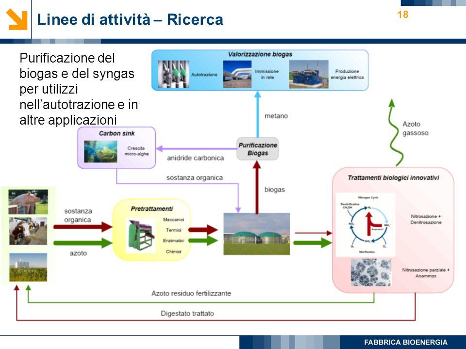 18 Linee di attività – Ricerca Purificazione del biogas e del syngas per utilizzi nellautotrazione e in altre applicazioni