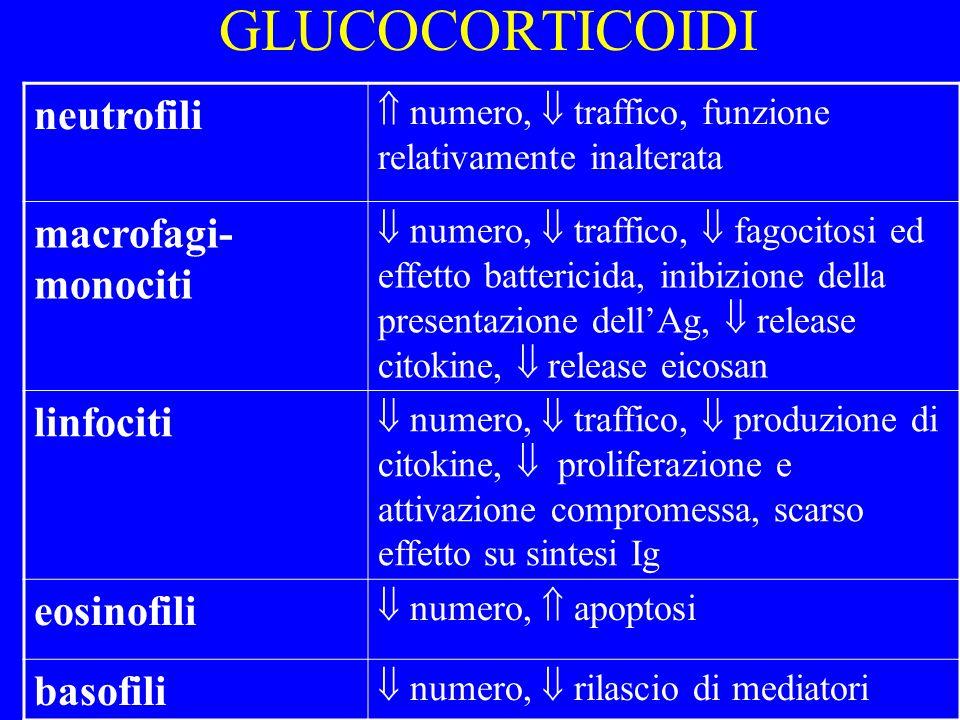 GLUCOCORTICOIDI neutrofili numero, traffico, funzione relativamente inalterata macrofagi- monociti numero, traffico, fagocitosi ed effetto battericida