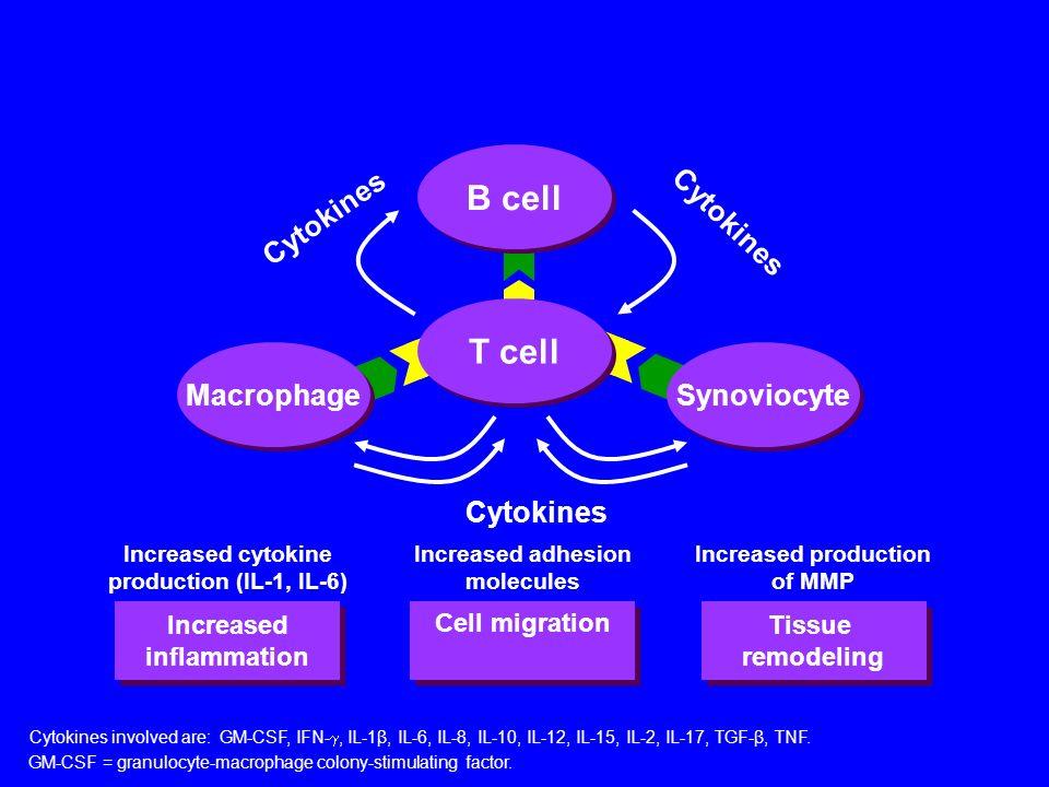 IL-15 GM-CSF M-CSF TNF- Cytokine Network HLA-DR Complement Metalloproteinases Fibroblast Metalloproteinases Prostaglandins Complement Adhesion molecule expression IL-1 TNF- IL-10 IL-1Ra IL-1 TNF- IL-8 IL-6 GM-CSF Macrophage FGF Firestein GS.