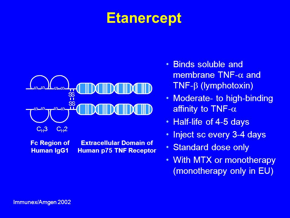 Fc Region of Human IgG1 Extracellular Domain of Human p75 TNF Receptor Etanercept Binds soluble and membrane TNF- and TNF- (lymphotoxin) Moderate- to high-binding affinity to TNF- Half-life of 4-5 days Inject sc every 3-4 days Standard dose only With MTX or monotherapy (monotherapy only in EU) CH3CH3CH2CH2 SS S S S S S S SS S S Immunex/Amgen 2002