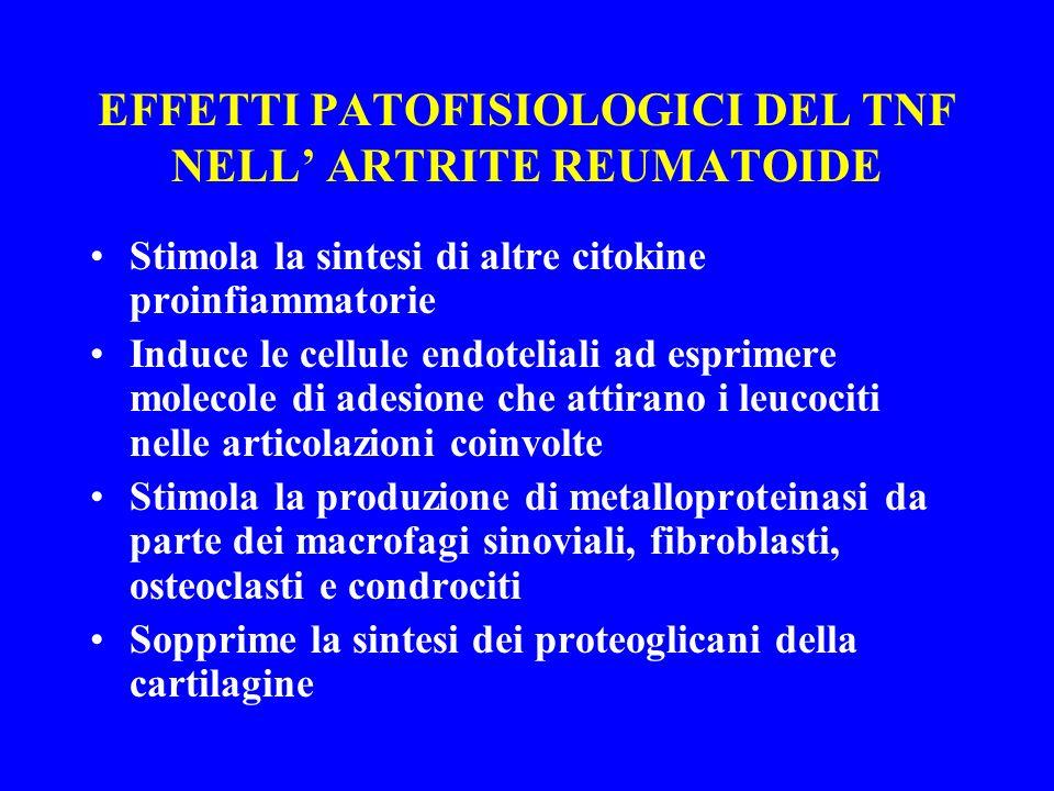 EFFETTI PATOFISIOLOGICI DEL TNF NELL ARTRITE REUMATOIDE Stimola la sintesi di altre citokine proinfiammatorie Induce le cellule endoteliali ad esprime