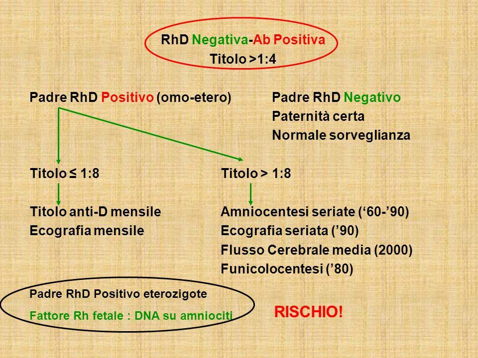 RhD Negativa-Ab Positiva Titolo >1:4 Padre RhD Positivo (omo-etero) Padre RhD Negativo Paternità certa Normale sorveglianza Titolo 1:8Titolo > 1:8 Tit