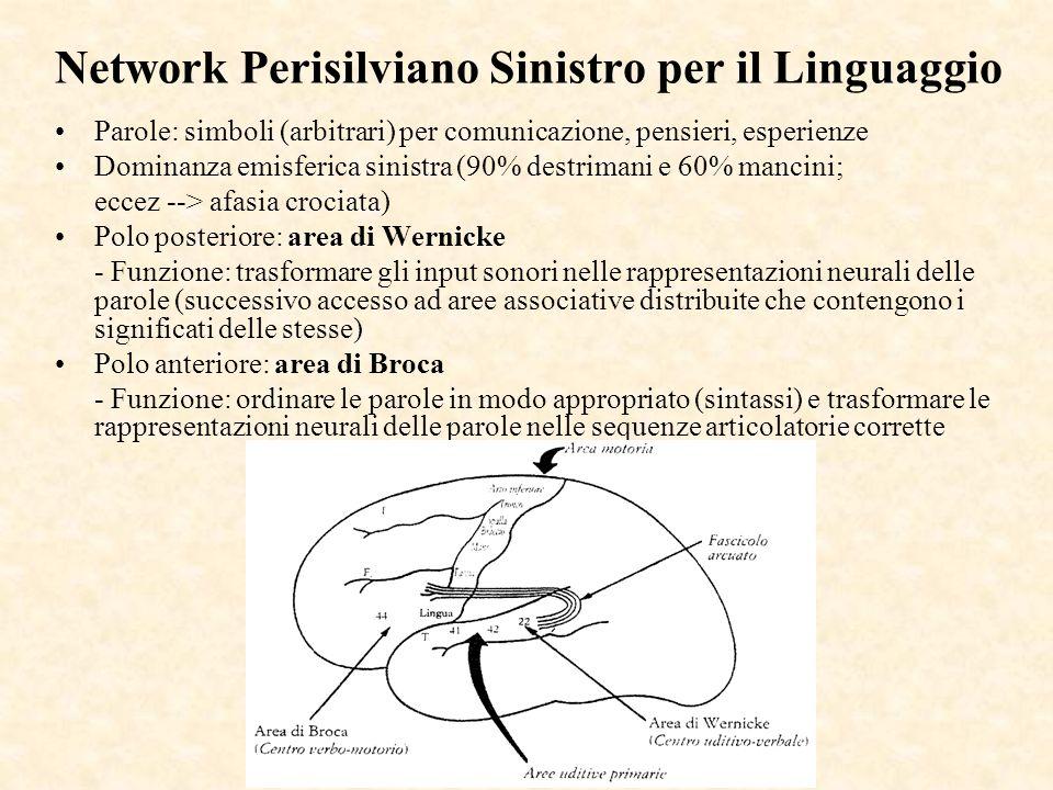 Network Perisilviano Sinistro per il Linguaggio Parole: simboli (arbitrari) per comunicazione, pensieri, esperienze Dominanza emisferica sinistra (90%