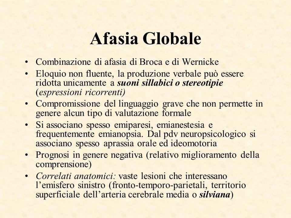Afasia Globale Combinazione di afasia di Broca e di Wernicke Eloquio non fluente, la produzione verbale può essere ridotta unicamente a suoni sillabic