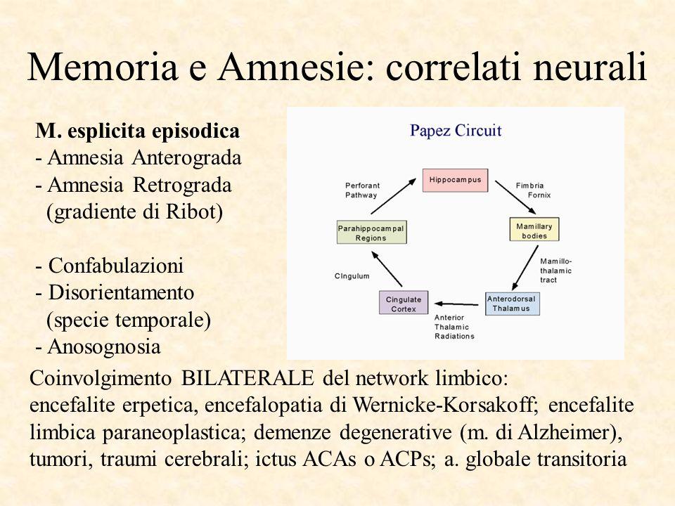 Memoria e Amnesie: correlati neurali M. esplicita episodica - Amnesia Anterograda - Amnesia Retrograda (gradiente di Ribot) - Confabulazioni - Disorie