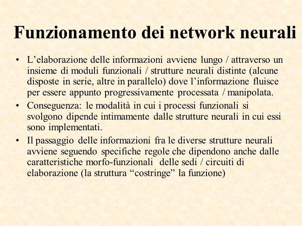 Funzionamento dei network neurali Lelaborazione delle informazioni avviene lungo / attraverso un insieme di moduli funzionali / strutture neurali dist