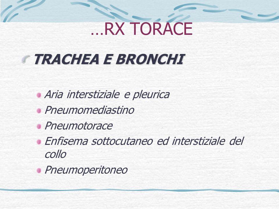 Classificazione PER SEDE Emorrage digestive SUPERIORI (a monte del Treitz) Emorragie digestive INFERIORI (a valle del Treitz)