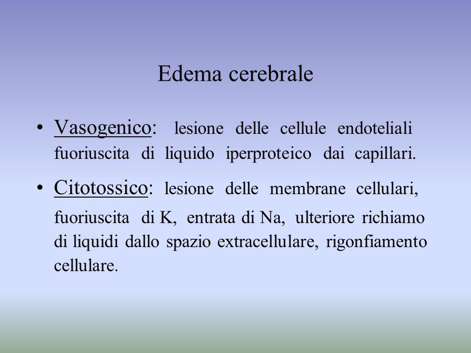 Edema cerebrale Vasogenico: lesione delle cellule endoteliali fuoriuscita di liquido iperproteico dai capillari. Citotossico: lesione delle membrane c