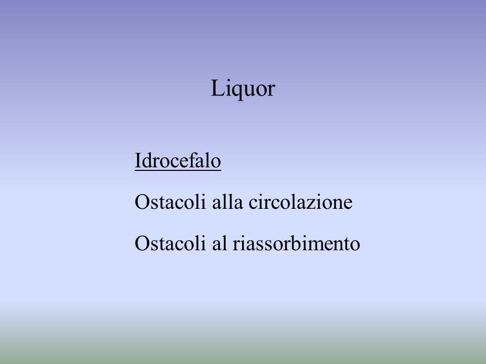 Liquor Idrocefalo Ostacoli alla circolazione Ostacoli al riassorbimento