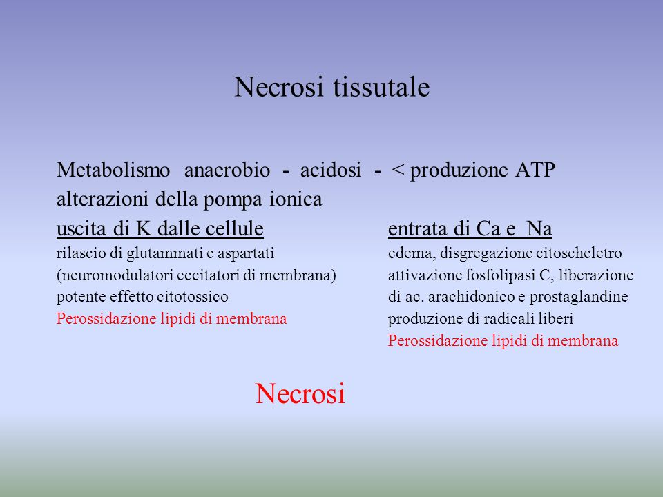 Necrosi tissutale Metabolismo anaerobio - acidosi - < produzione ATP alterazioni della pompa ionica uscita di K dalle celluleentrata di Ca e Na rilasc