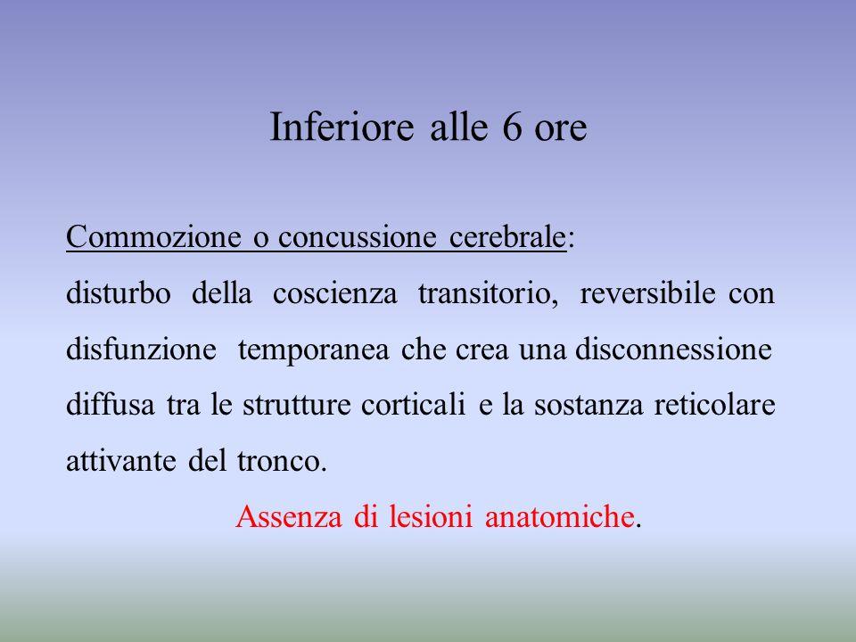 Inferiore alle 6 ore Commozione o concussione cerebrale: disturbo della coscienza transitorio, reversibile con disfunzione temporanea che crea una dis