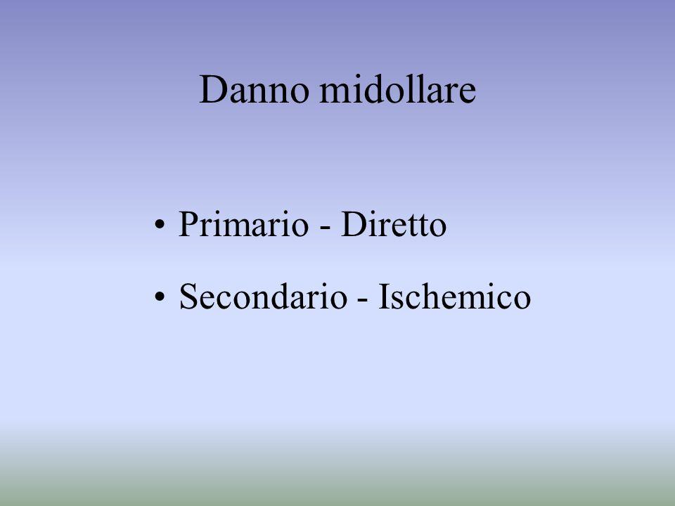 Danno midollare Primario - Diretto Secondario - Ischemico