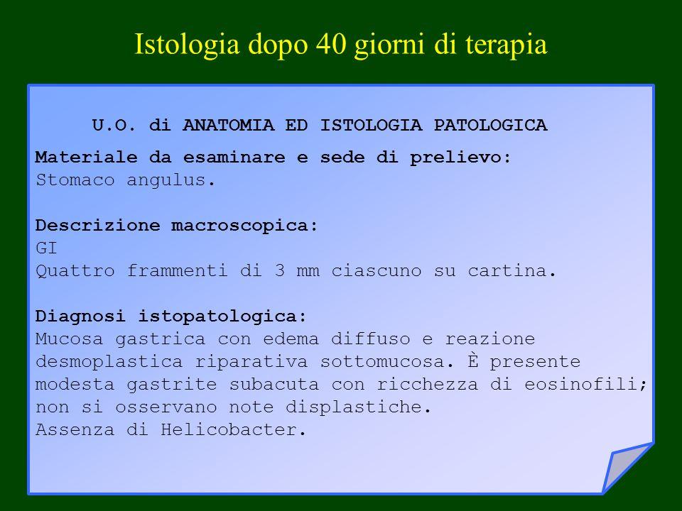 U.O. di ANATOMIA ED ISTOLOGIA PATOLOGICA Materiale da esaminare e sede di prelievo: Stomaco angulus. Descrizione macroscopica: GI Quattro frammenti di