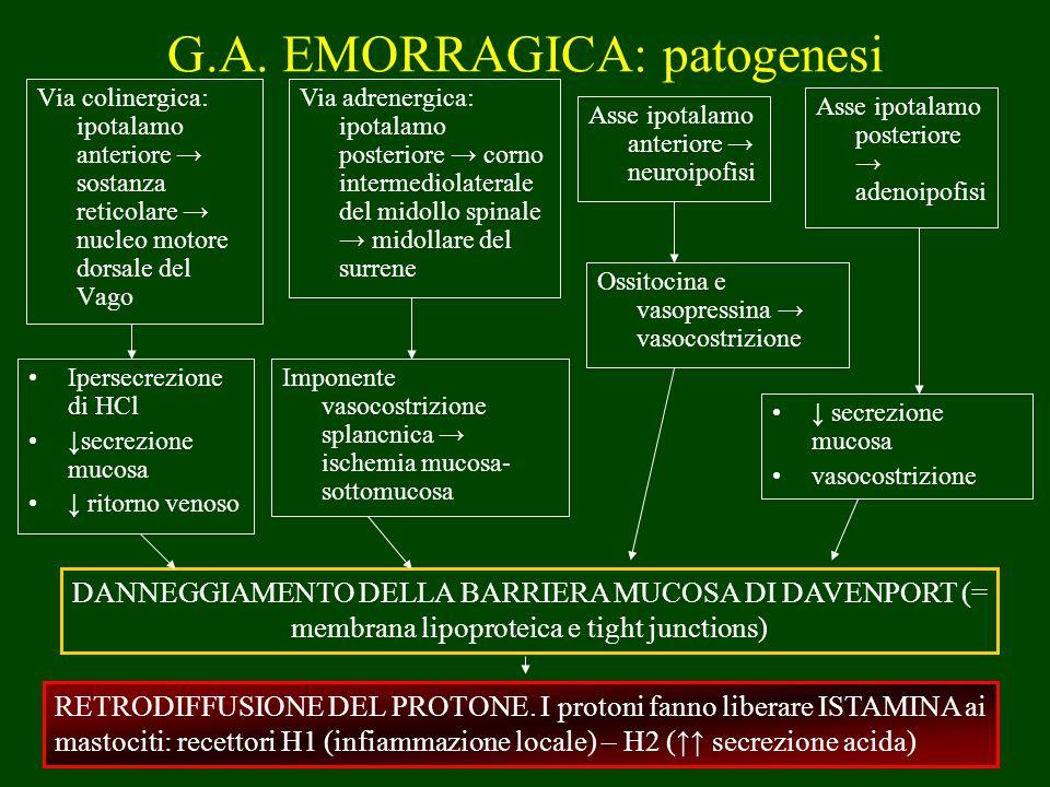 Via colinergica: ipotalamo anteriore sostanza reticolare nucleo motore dorsale del Vago G.A. EMORRAGICA: patogenesi Via adrenergica: ipotalamo posteri