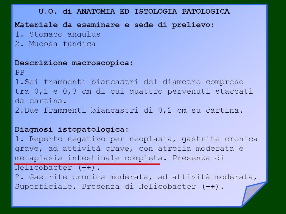 U.O. di ANATOMIA ED ISTOLOGIA PATOLOGICA Materiale da esaminare e sede di prelievo: 1.Stomaco angulus 2.Mucosa fundica Descrizione macroscopica: PP 1.