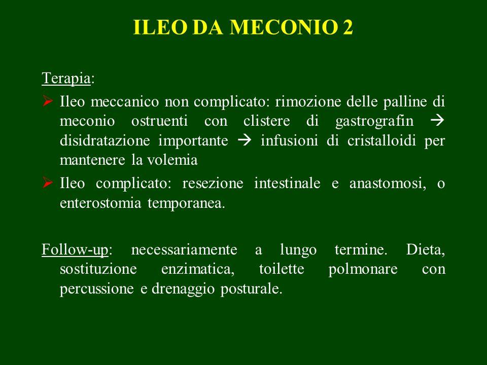 ILEO DA MECONIO 2 Terapia: Ileo meccanico non complicato: rimozione delle palline di meconio ostruenti con clistere di gastrografin disidratazione importante infusioni di cristalloidi per mantenere la volemia Ileo complicato: resezione intestinale e anastomosi, o enterostomia temporanea.