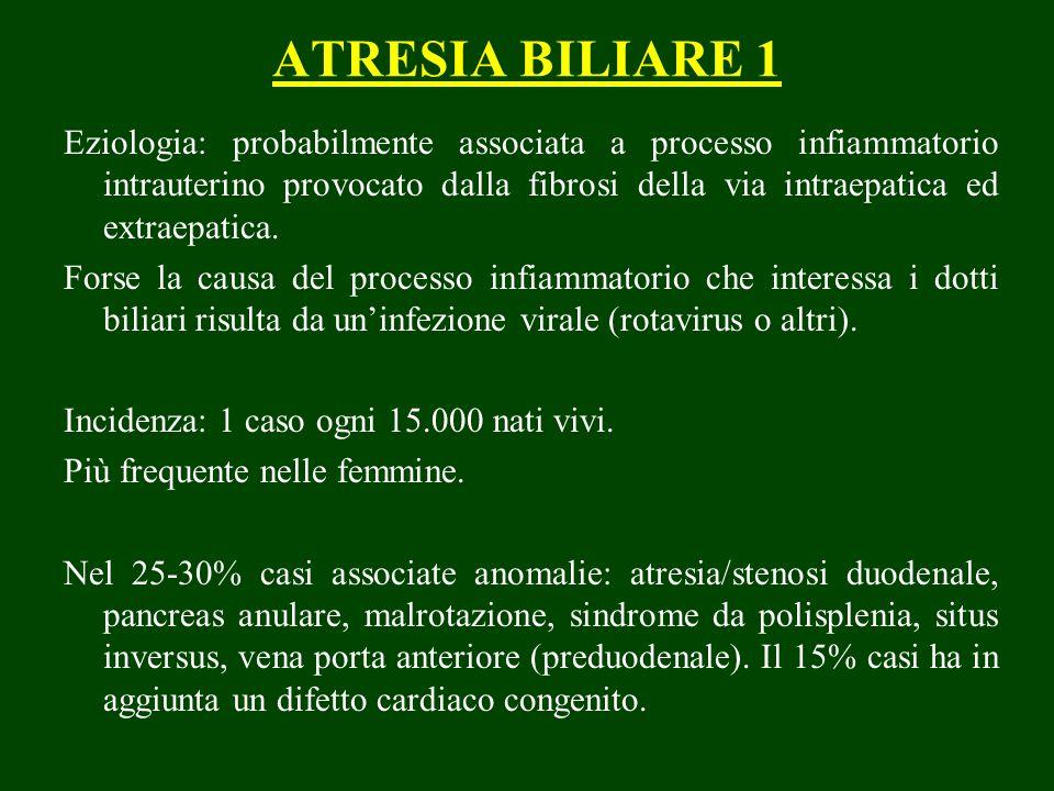 ATRESIA BILIARE 1 Eziologia: probabilmente associata a processo infiammatorio intrauterino provocato dalla fibrosi della via intraepatica ed extraepatica.