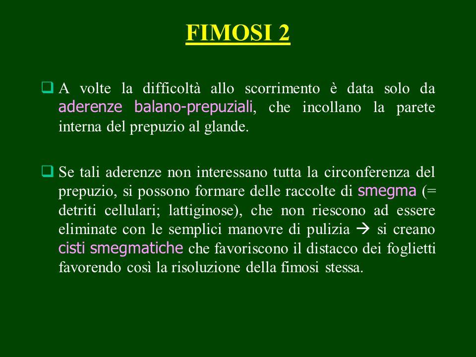 FIMOSI 2 A volte la difficoltà allo scorrimento è data solo da aderenze balano-prepuziali, che incollano la parete interna del prepuzio al glande. Se