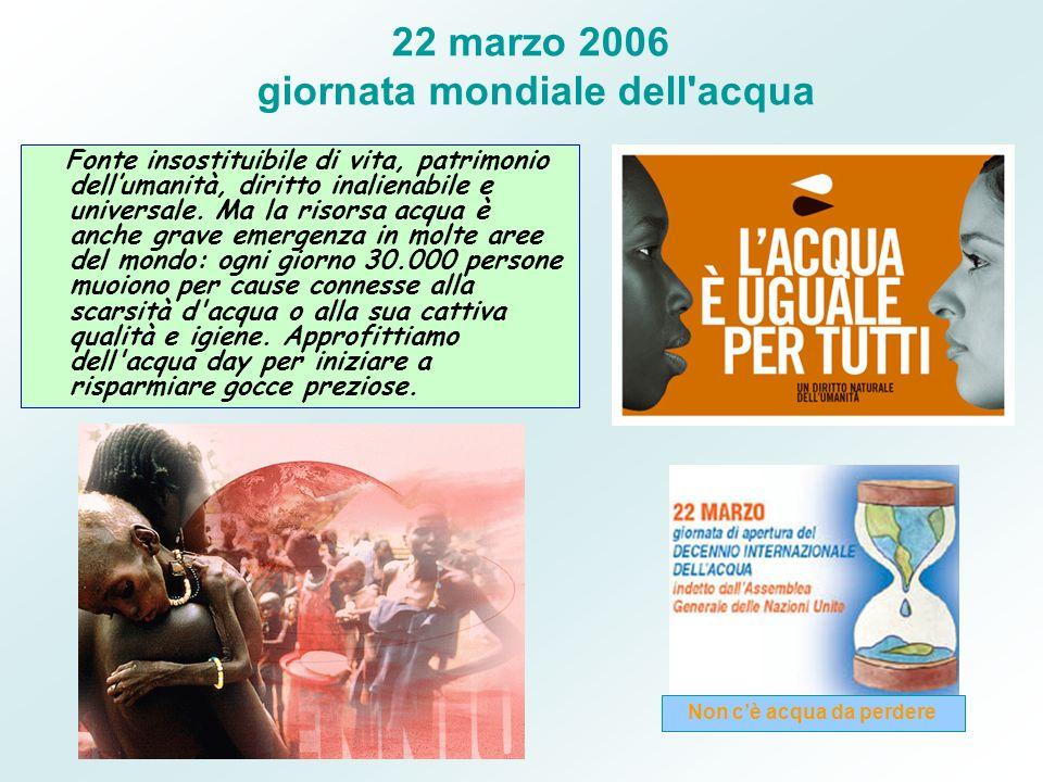 22 marzo 2006 giornata mondiale dell'acqua Fonte insostituibile di vita, patrimonio dellumanità, diritto inalienabile e universale. Ma la risorsa acqu