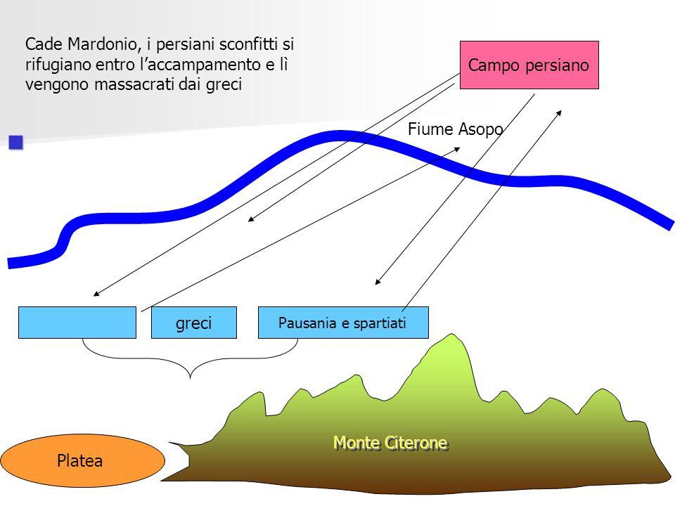 Platea Monte Citerone Fiume Asopo Campo persiano greci Pausania e spartiati Cade Mardonio, i persiani sconfitti si rifugiano entro laccampamento e lì