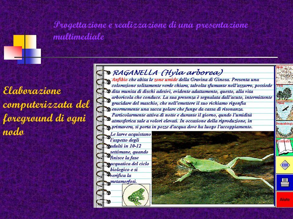 Progettazione e realizzazione di una presentazione multimediale Elaborazione grafica del background e relativi pulsanti di navigazione