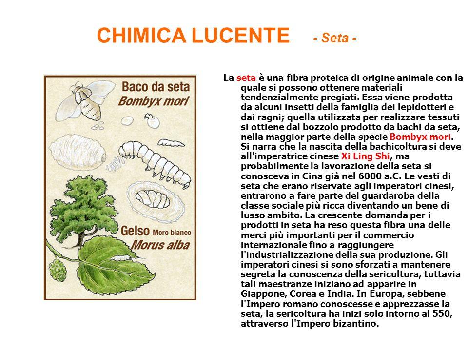 CHIMICA LUCENTE - Seta - La seta è una fibra proteica di origine animale con la quale si possono ottenere materiali tendenzialmente pregiati. Essa vie