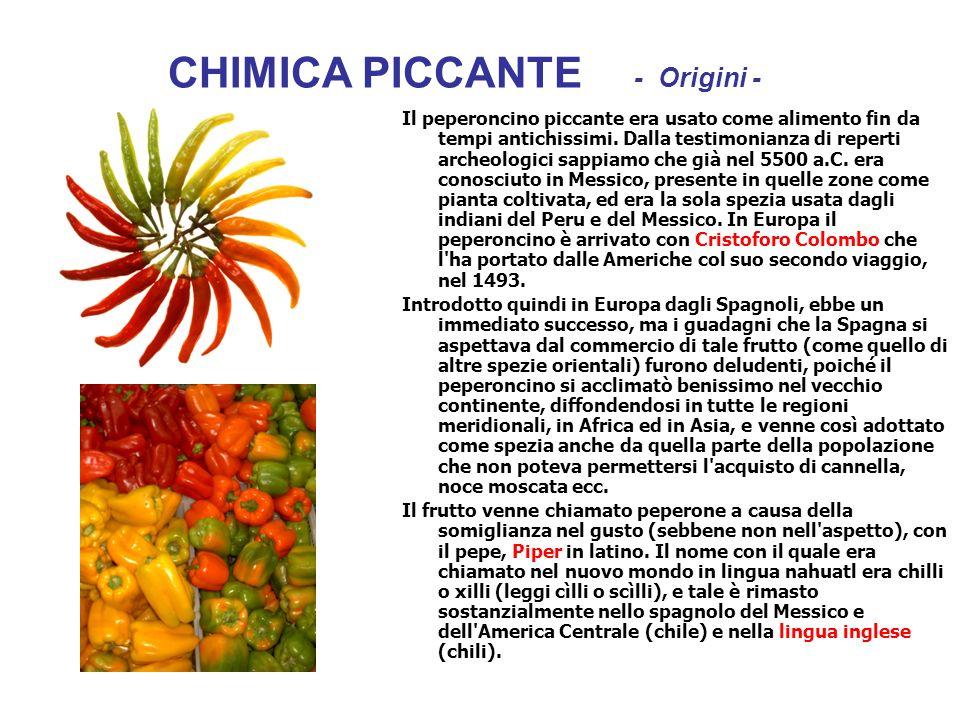 CHIMICA PICCANTE - Origini - Il peperoncino piccante era usato come alimento fin da tempi antichissimi. Dalla testimonianza di reperti archeologici sa