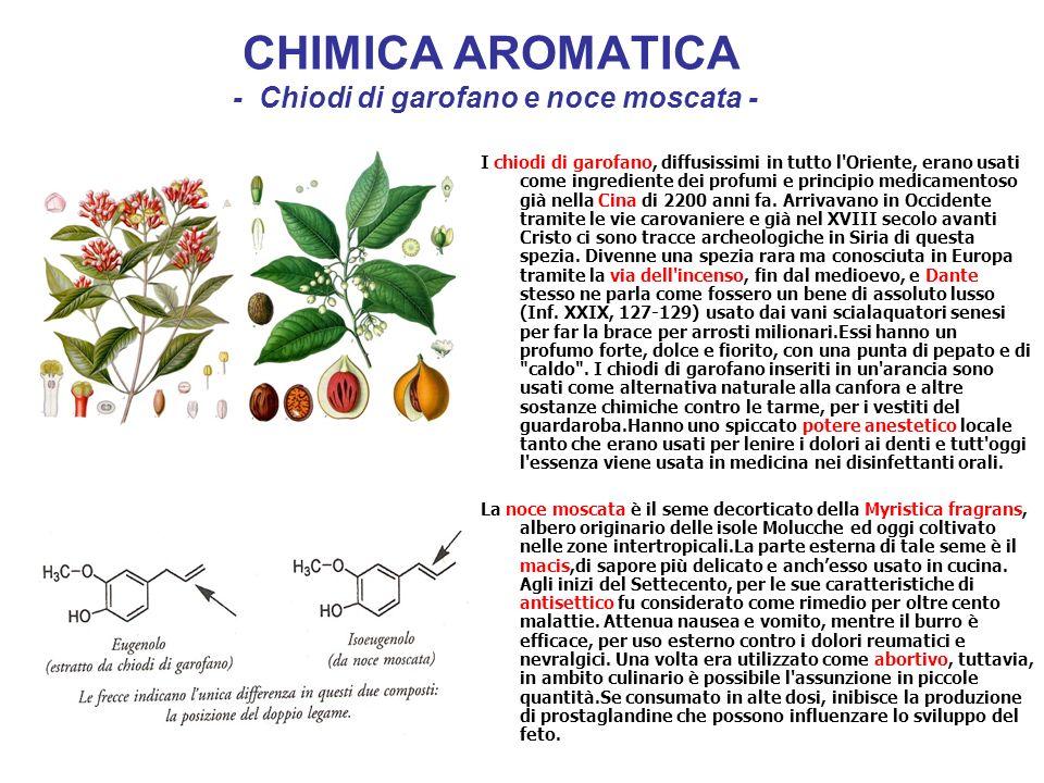 CHIMICA AROMATICA - Chiodi di garofano e noce moscata - I chiodi di garofano, diffusissimi in tutto l'Oriente, erano usati come ingrediente dei profum