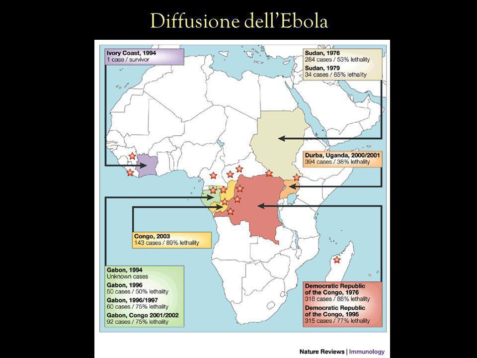 Diffusione dellEbola