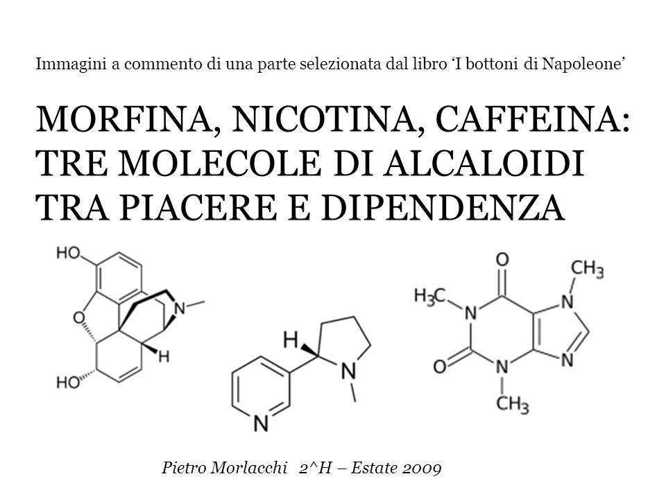 Tre diverse molecole di ALCALOIDI, ricercate e apprezzate da millenni: la morfina, tratta dal papavero da oppio, la nicotina, contenuta nel tabacco e la caffeina presente nel tè, nel caffè e nella coca.