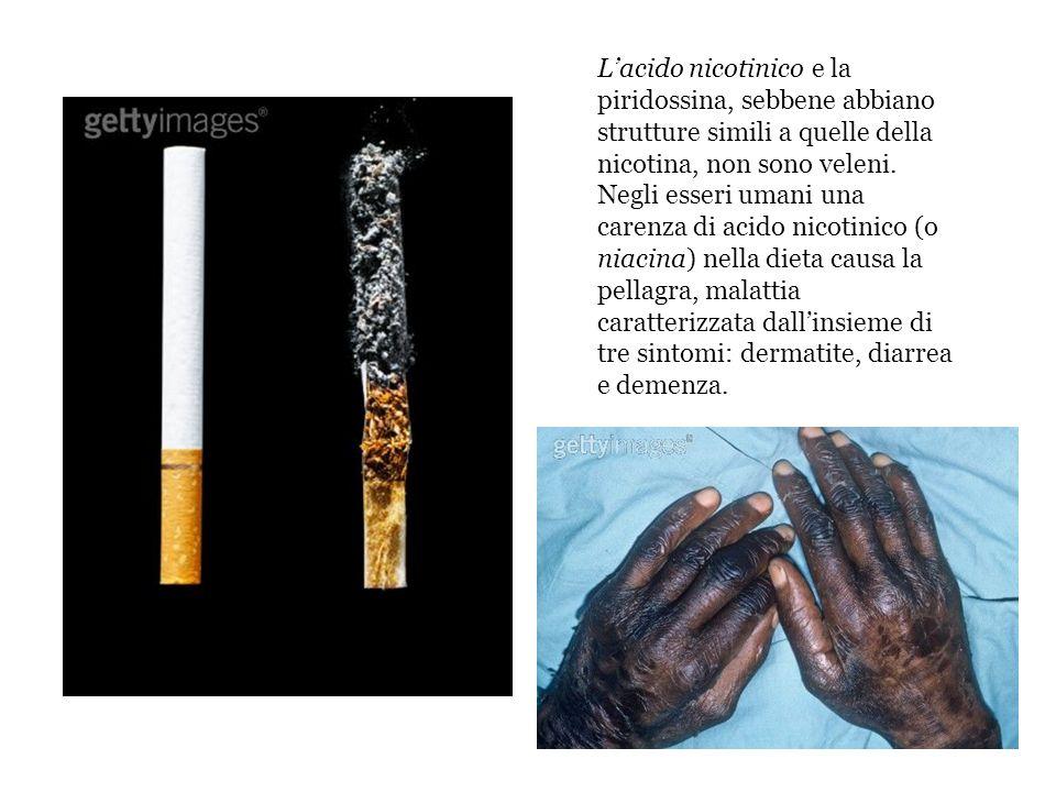 Lacido nicotinico e la piridossina, sebbene abbiano strutture simili a quelle della nicotina, non sono veleni. Negli esseri umani una carenza di acido
