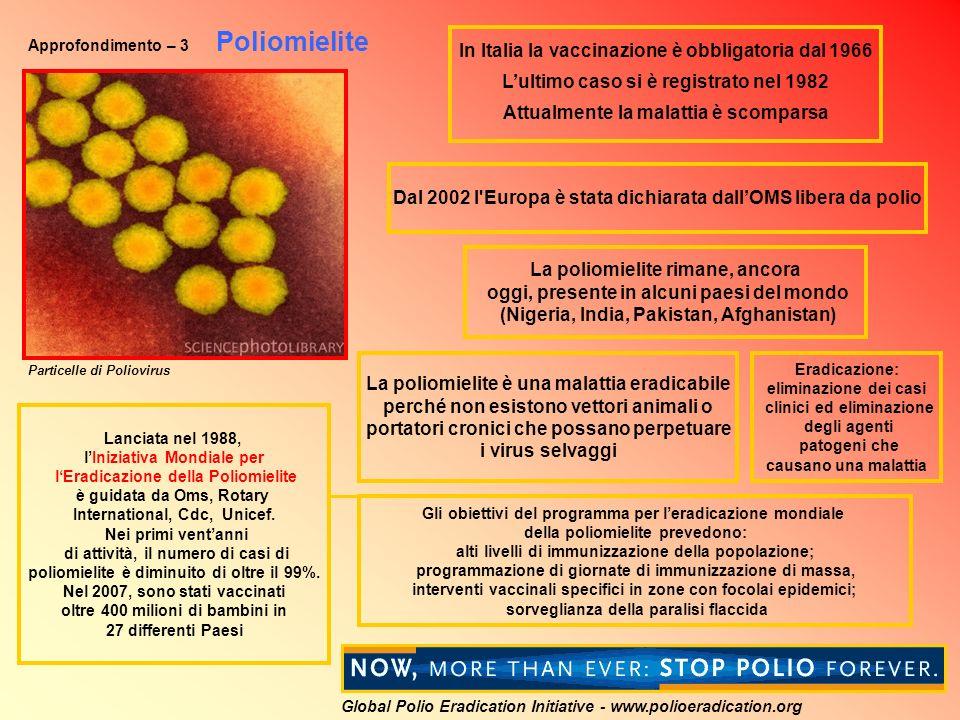 Approfondimento – 3 Poliomielite La poliomielite rimane, ancora oggi, presente in alcuni paesi del mondo (Nigeria, India, Pakistan, Afghanistan) In Italia la vaccinazione è obbligatoria dal 1966 Lultimo caso si è registrato nel 1982 Attualmente la malattia è scomparsa Dal 2002 l Europa è stata dichiarata dallOMS libera da polio Eradicazione: eliminazione dei casi clinici ed eliminazione degli agenti patogeni che causano una malattia La poliomielite è una malattia eradicabile perché non esistono vettori animali o portatori cronici che possano perpetuare i virus selvaggi Lanciata nel 1988, lIniziativa Mondiale per lEradicazione della Poliomielite è guidata da Oms, Rotary International, Cdc, Unicef.